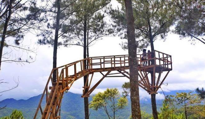 Wisata Rumah Pohon Pabangbon Bogor Smartmama