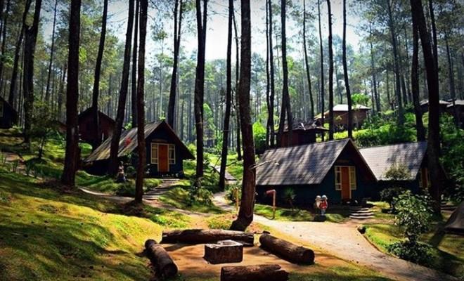 Wisata Alam Orchid Forest Cikole Bandung Smartmama